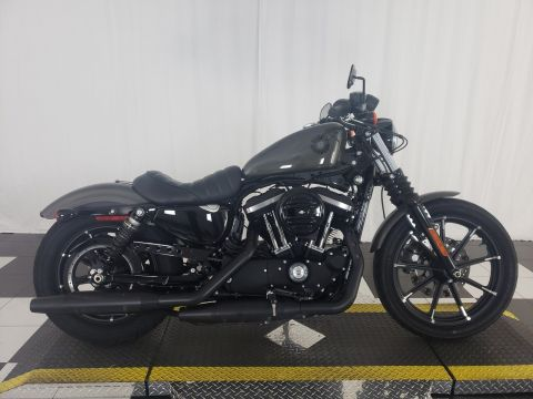Pre-Owned 2019 Harley-Davidson Sportster Iron 883 XL883N